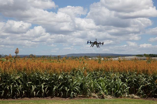 valorisation des données drone champs