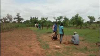 Association Vergers d'Afrique : un verger, une famille, un reve…
