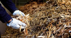 Énergie biomasse: savoir caractériser et utiliser efficacement…