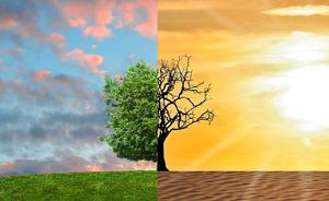 Intégrer l'influence des changements climatiques dans l'exercic…