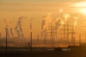 Droit de l'environnement : quoi savoir pour bien gérer son proj…