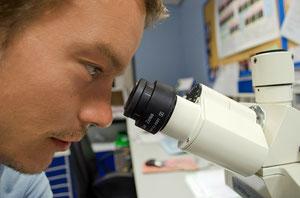 Optimiser ses pratiques de recherche et développement